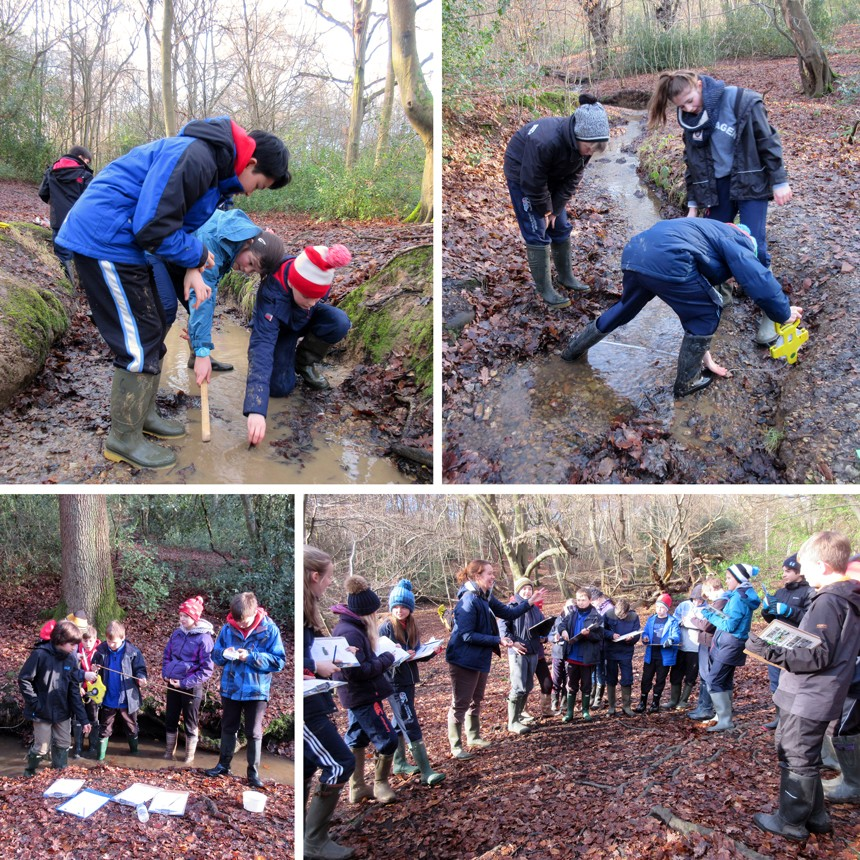 gsce epping forest coursework If students enjoyed biology at gcse, and would like to delve into it in more   there is no longer coursework in biology, instead we complete six required  at  the end of year 12 with the possibility of a trip to the epping forest field centre.