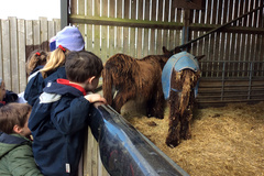 Kindergarten children visiting Hamerton Zoo